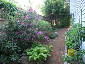 pathway to ocean and garden views for sale
