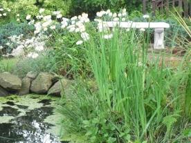 tranquil pond Merville real estate property